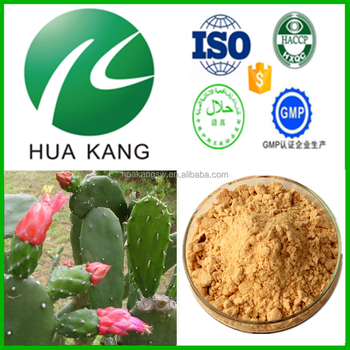 China suppliers prickly pear cactus fruit,prickly pear cactus pills,prickly pear cactus syrup