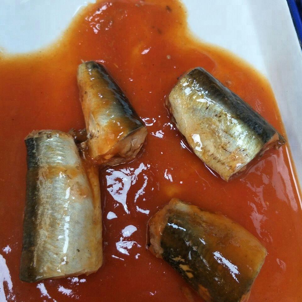 Консервированная Тихоокеанская скумбрия Джек в рассоле, консервированная скумбрия в томатном соусе 425GX24TIN