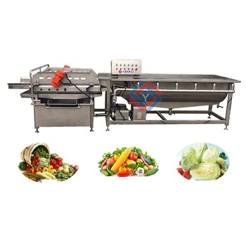 Stainless Steel Apple/ Pear/ Mango/ Fruit/ Vegetable Washing/ Cleaning/ Processing Machine/ Equipment