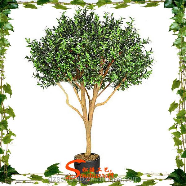 نباتات الزينة دائمة الخضرة شجرة بونسيه بلاستيكية للديكور شجرة الزيتون Buy شجرة بونساي قديمة للبيع شجرة زيتون صناعية أشجار صناعية داخلية Product On Alibaba Com