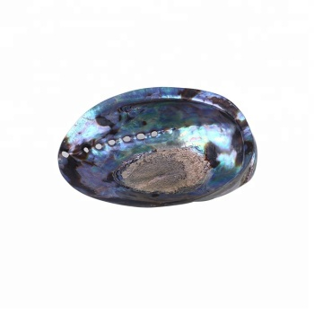 Wholesale Polished Abalone Shell Paua Jewelry