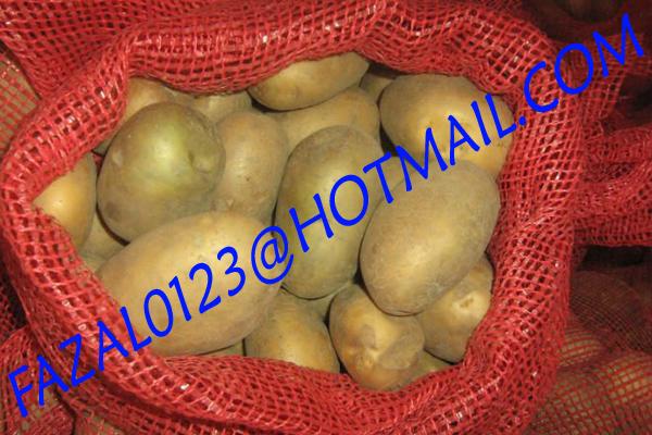Бангладеш, высокое качество, свежий гранильный картофель и Алмазный картофель от экспортной торговли, по низкой цене
