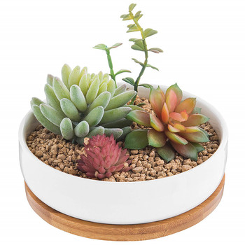 6.2 Inch Modern Decorative Garden Flower Pot Ceramic Pots for Succulent Cactus Plants Pot with Drainage Bamboo Tray
