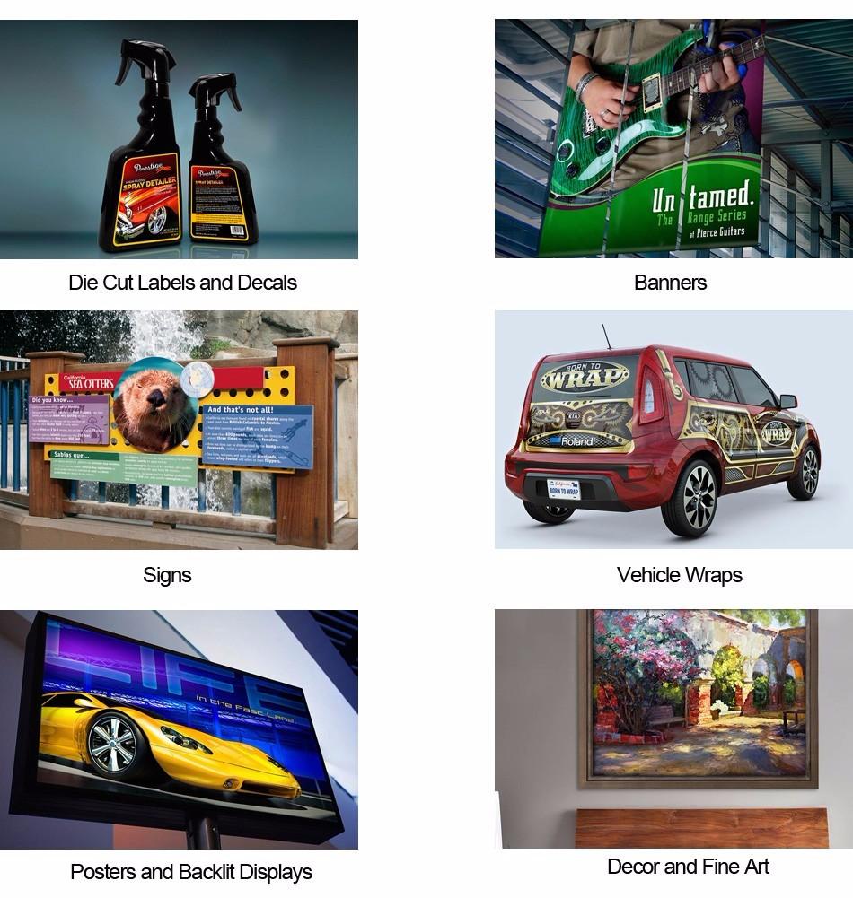 Fadeless SS21 Eco Solvent Based Printing ink for Mimaki JV5-130S JV5-160S  JV5-320S Printer Ink - us270 6829de8d9c
