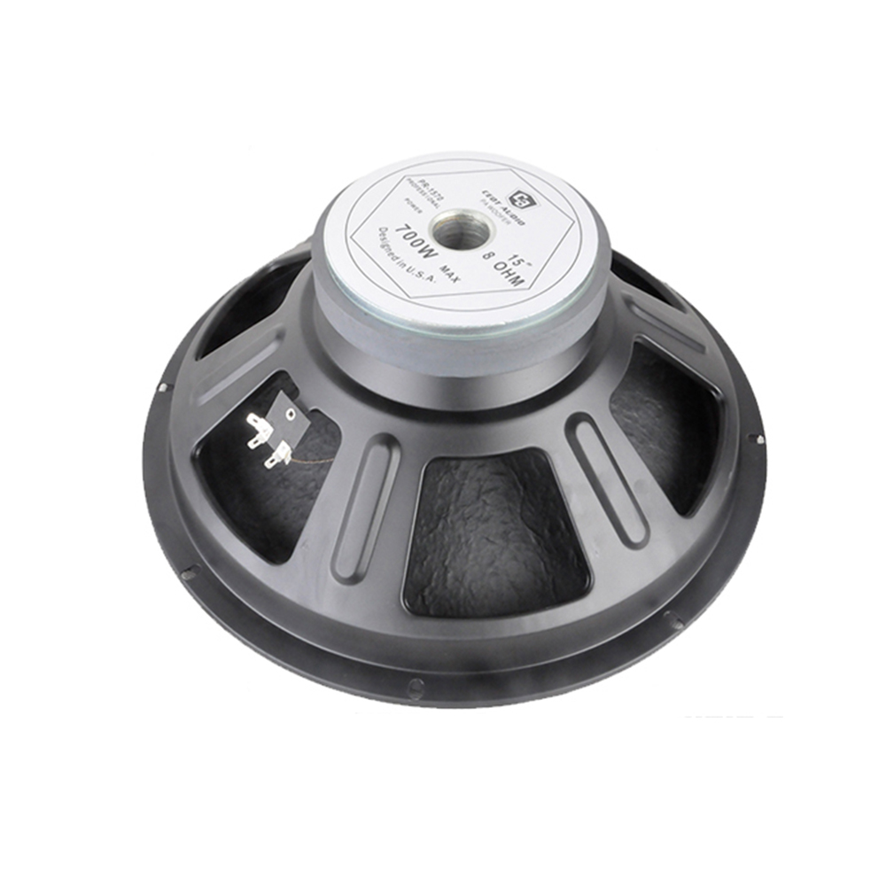 Pro Audio Woofer Speaker Replacement Parts Pr-10 - Buy Speaker  Replacement Parts,Pa Speaker Woofer,Speaker Part Product on Alibaba.com