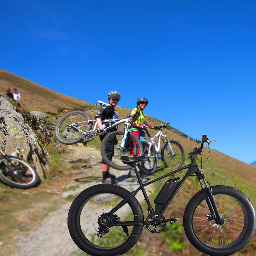 High Mountain! Electric Mountain Bike,2 Wheel Cool ...