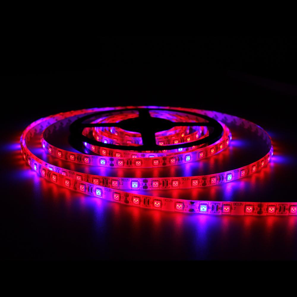10pcs Smd5050 Led Strip Light 300leds Waterproof Led Grow