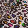 Leopard Rõ Ràng