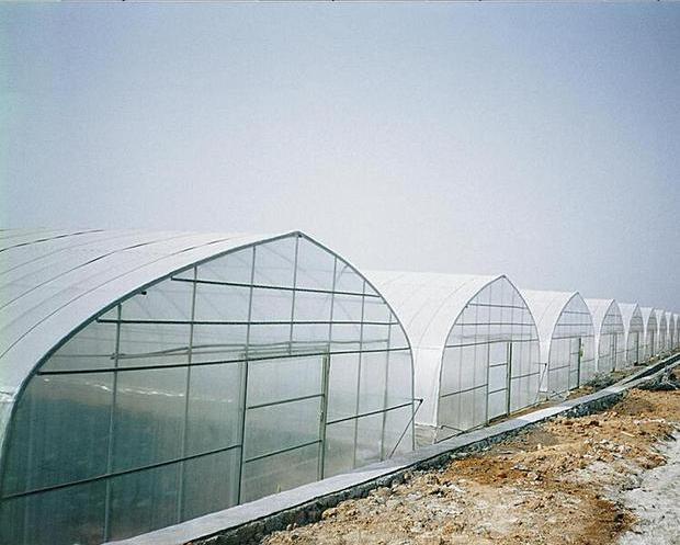 2020 высокое качество и дешевая цена, пластиковая крышка многопролетные агрикультурные теплицы полиэтиленовой пленки