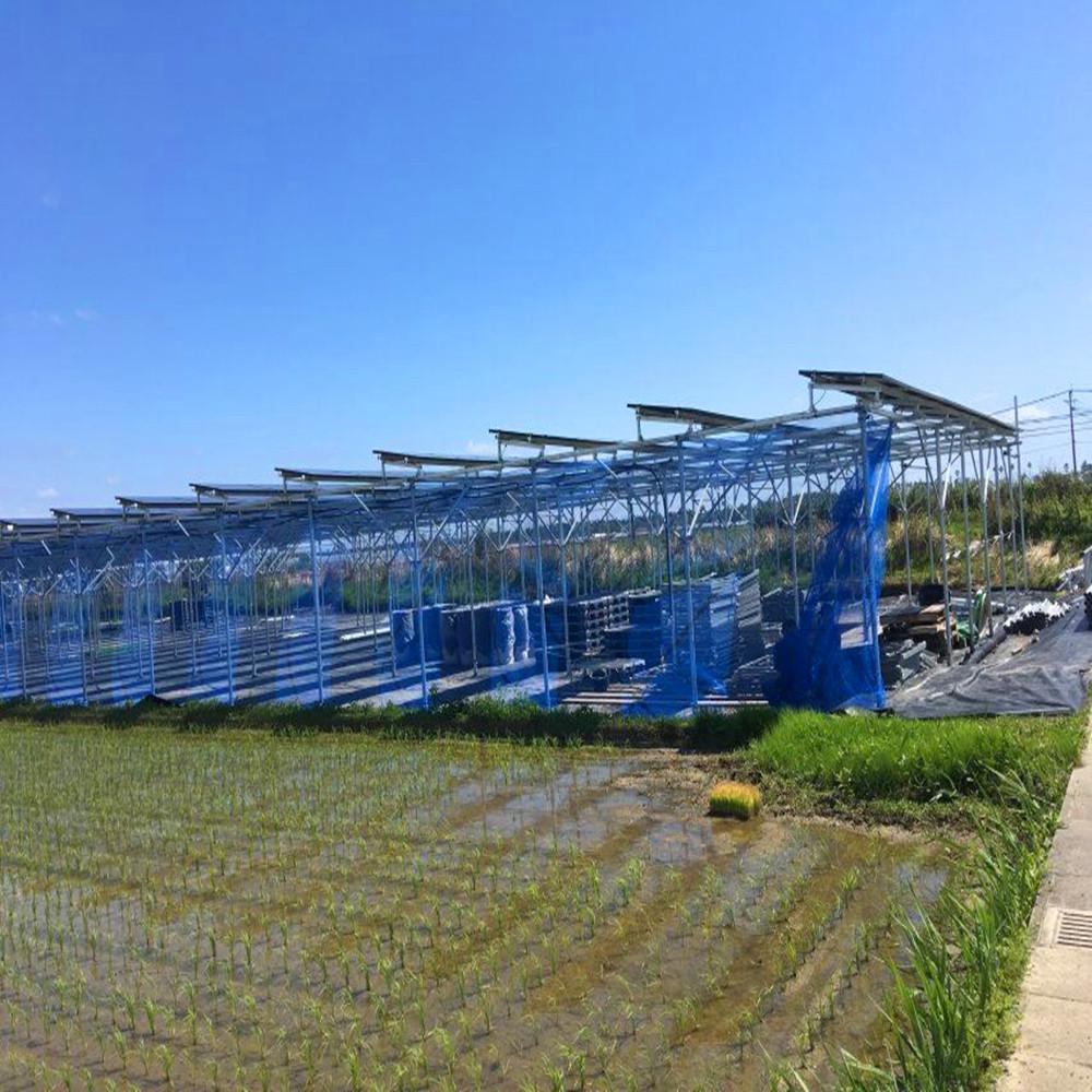 Новейшее состояние, фотогальваническое стекло, сельскохозяйственная солнечная система крепления сельскохозяйственных земель