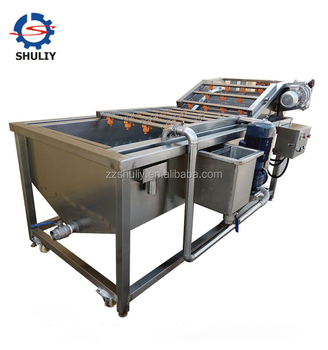 Brush roller washing and cleaning machine for cactus fruit