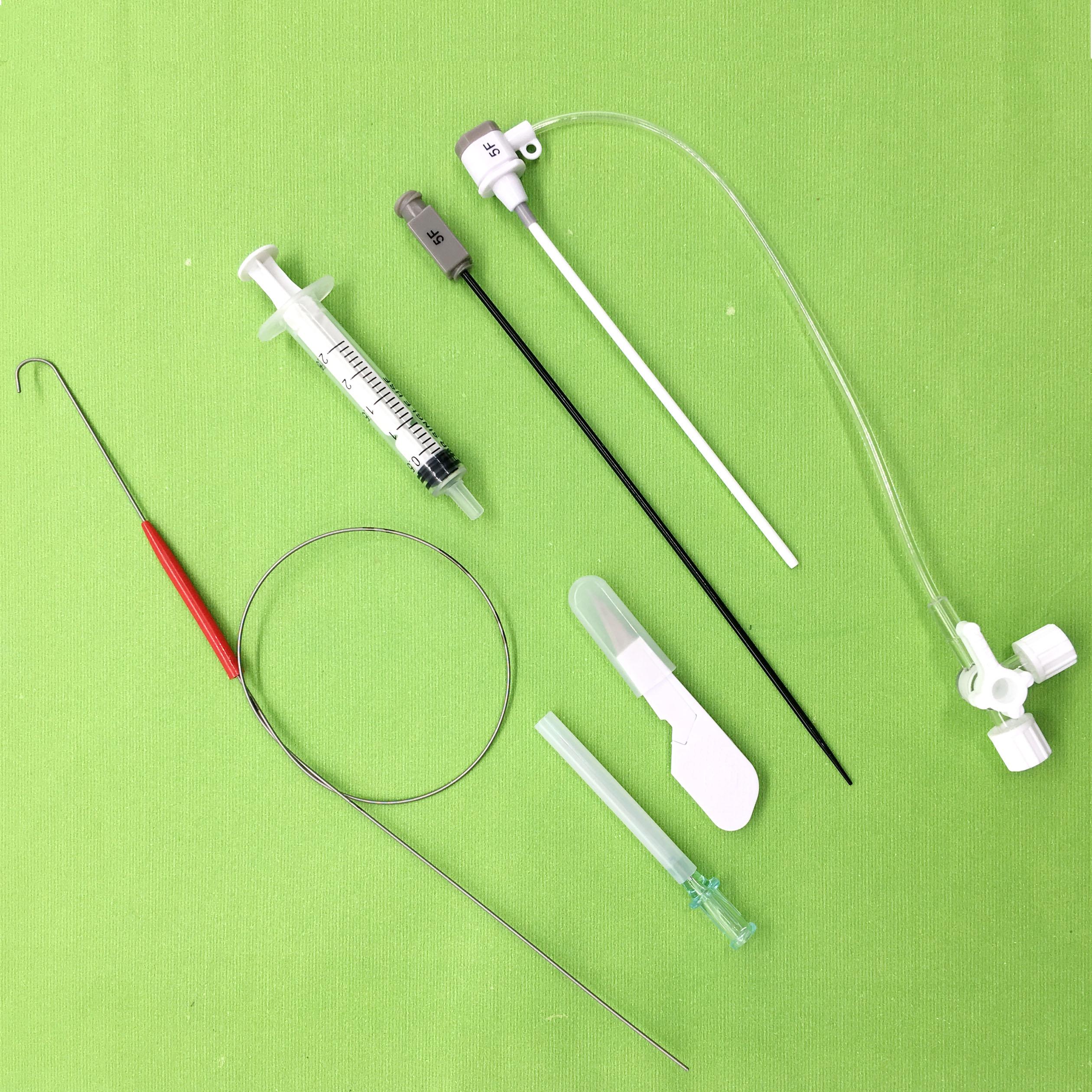 Medical 5F 6F 7F 8F 9F 10F Femoral,transradial introducer sheath 11cm