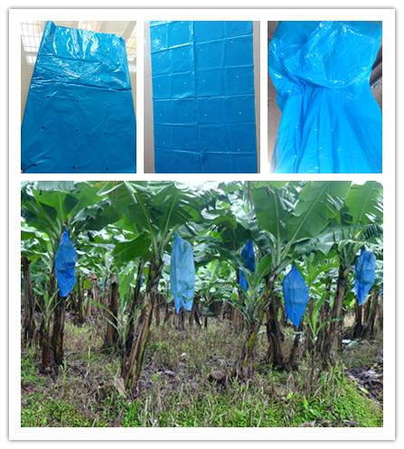 Пластиковый синий полиэтиленовый пакет для банановых крышек