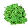 चमकीले हरे रंग