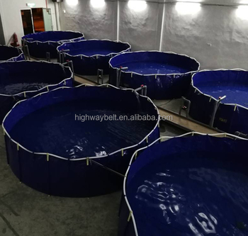 Indoor or outdoor pvc collapsible pisciculture tank