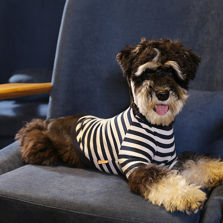 Pet Supplies Black White Stripe Leisure Dog Shirt Wholesale - Buy Dog Shirt,Dog  Clothes,Dog Shirt Wholesale Product on Alibaba.com