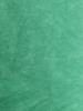 Light Green(Aqua)