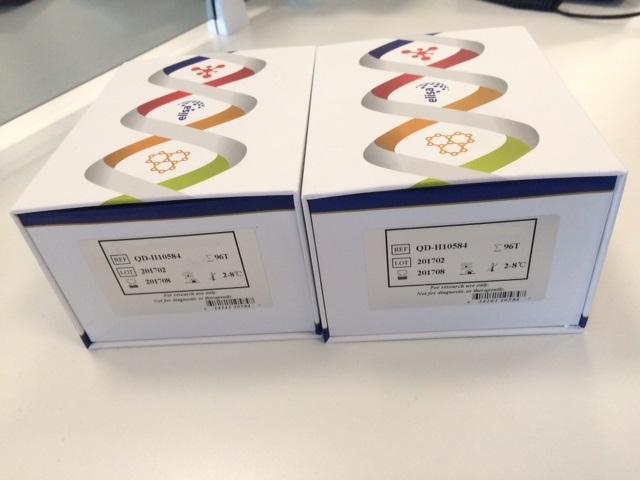 BIOBASE Food Safety Testing Automatic Aflatoxin B1 Elisa Reader Machine