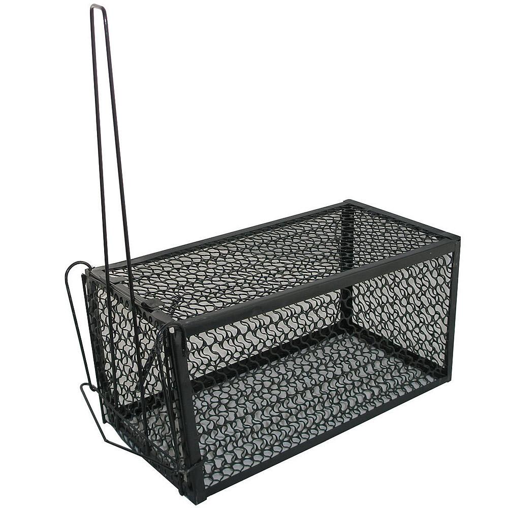 Jaulas para ratones compra lotes baratos de jaulas para - Trampas para cazar ratas ...