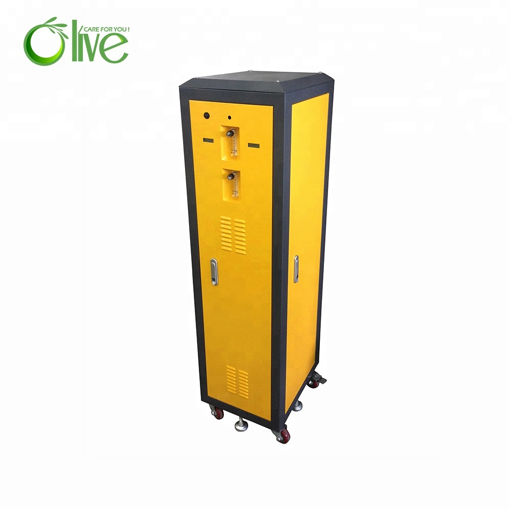Hight Purity 20l Dual Flow Oxygen Concentrator For Fish Aquaculture - KingCare | KingCare.net