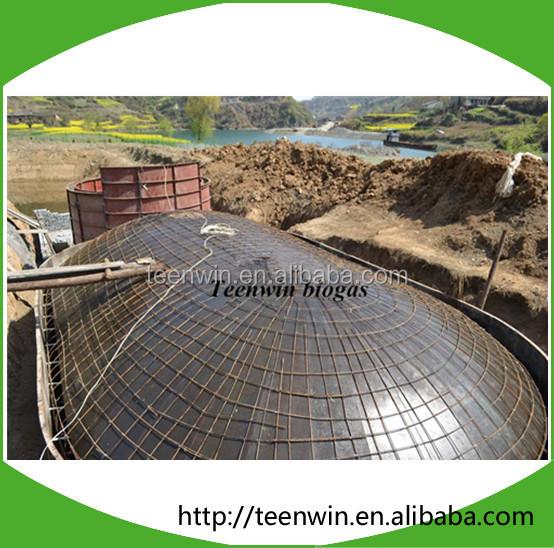 Биогазовая электростанция Teenwin 100 кВт