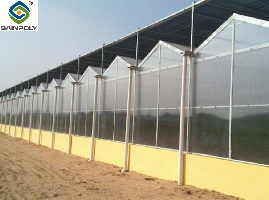 The hot sale popular durable commercial Venlo glass greenhouse