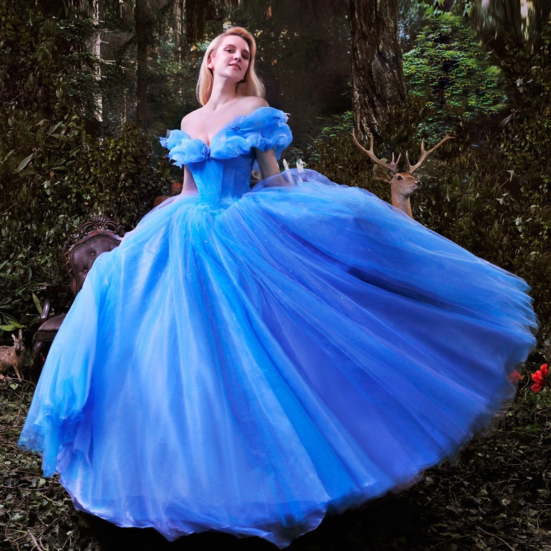 cheap cinderella dress for adults