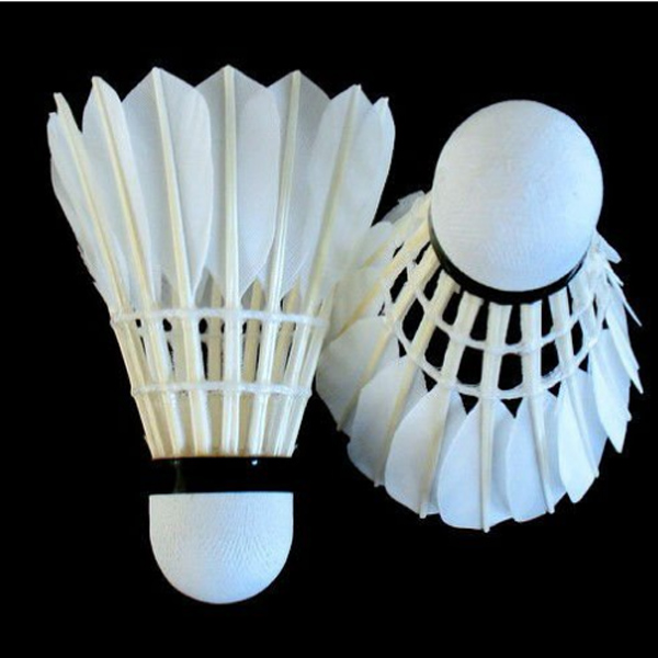 Factory Price Wholesale Durable Class C Goose Feather Shuttlecock for Training