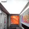 White translucent ceiling