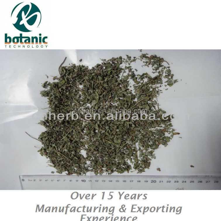 natural raw Spearmint leaves for herbal tea - 4uTea | 4uTea.com