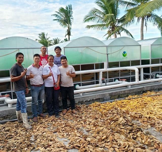 Промышленный биогазовый завод Teenwin, переварник для ферм и обработки коровьего навоза