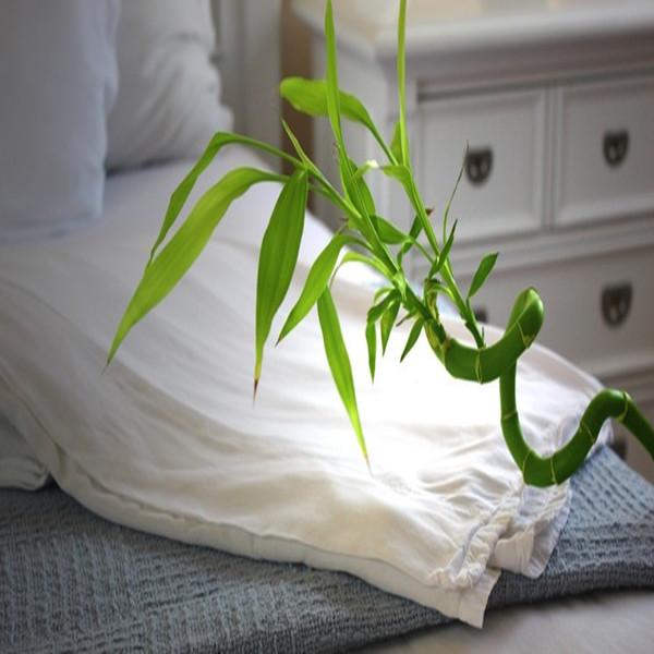 Невероятно мягкая гипоаллергенная и антибактериальная Экологически чистая Бамбуковая ткань