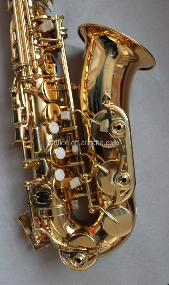 Professional Gold Lacquer Alto Saxophone