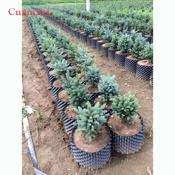 garden pots for sale planting pots cheap plant pot root control container for healthy and fast growth