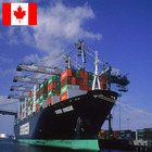 Chine Professional Freight Forwarder Shipping Chine To Canada Door To Door