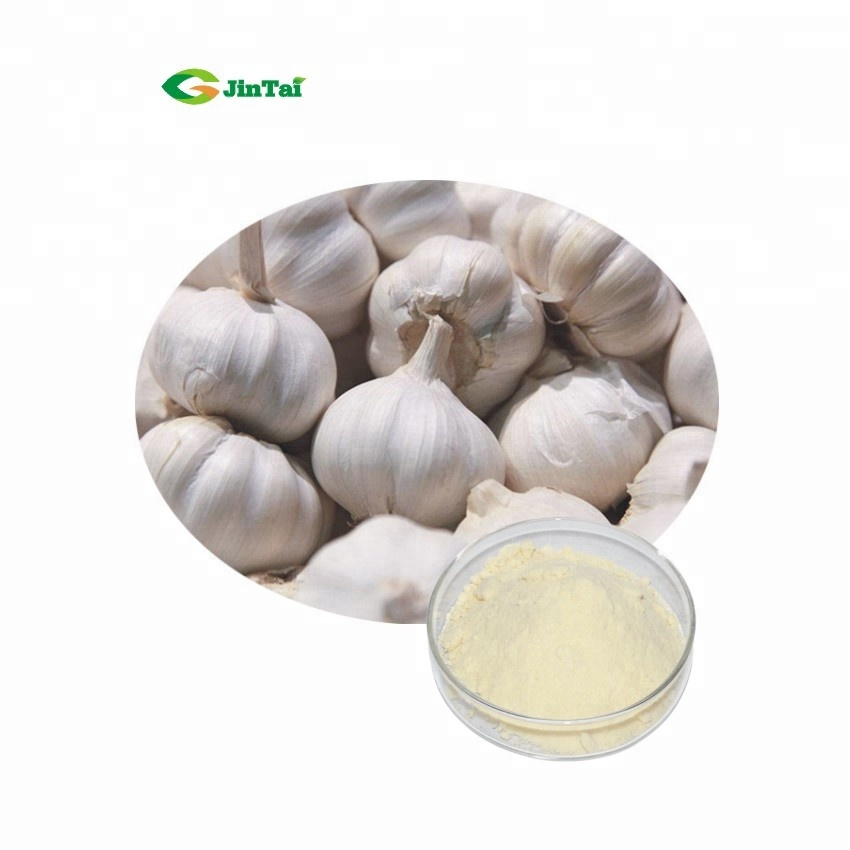 black Garlic extract Freeze Dried Garlic powder