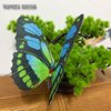 C:grass decor butterfly