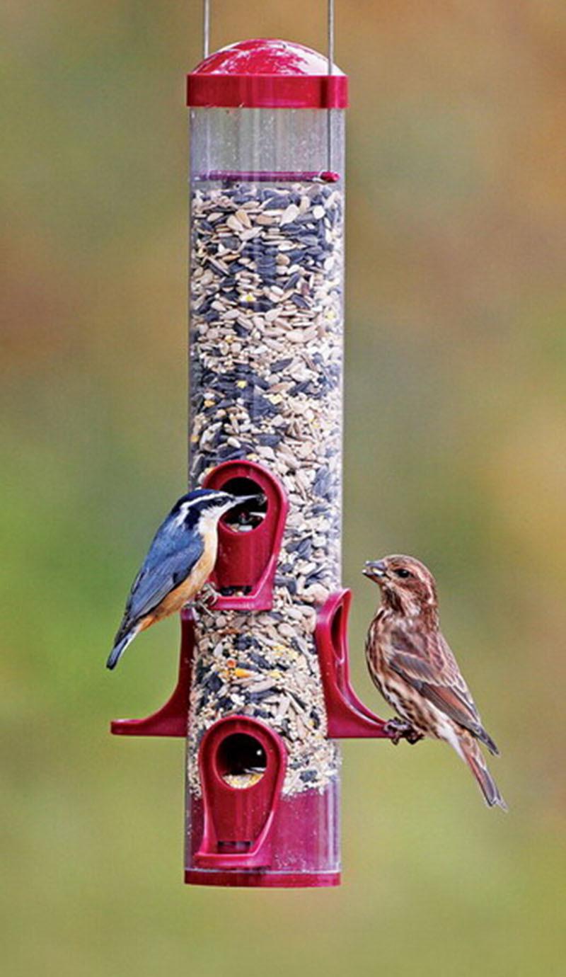Hanging Wild Bird Feeder Garden Seed Container Finch