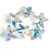 14mm Starfish