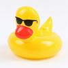 Duck #2