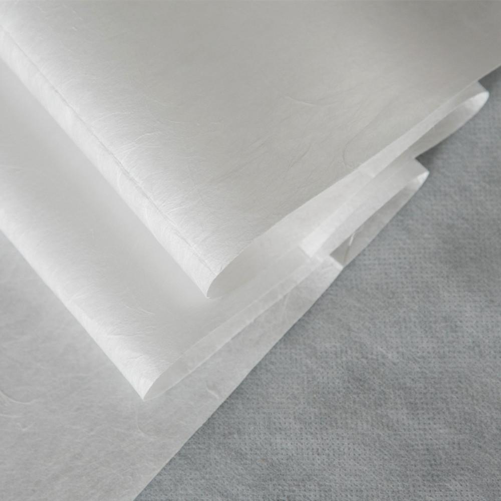 Нетканый нетканый материал ТРЕС 20gsm BFE99 % PP