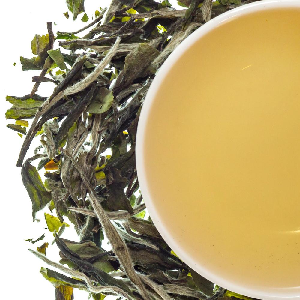 Pai Mu Dan White Tea - 4uTea | 4uTea.com