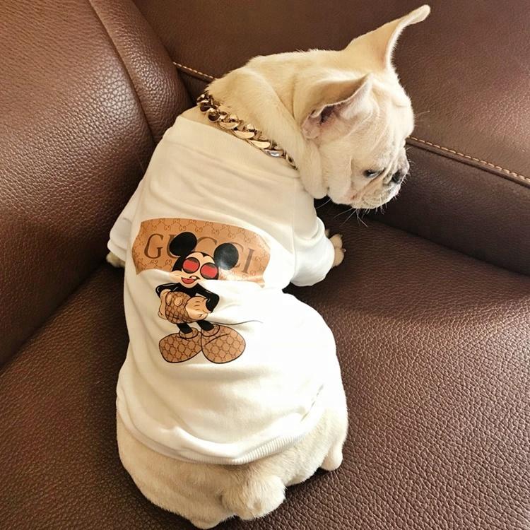 Wholesale Designer Pet Accessories Cotton Lovable Pet Clothes Summer T Shirt  Dog Clothes Factory - Buy Dog Clothes Factory,T Shirt Dog Clothes  Factory,Lovable Dog Clothes Product on Alibaba.com