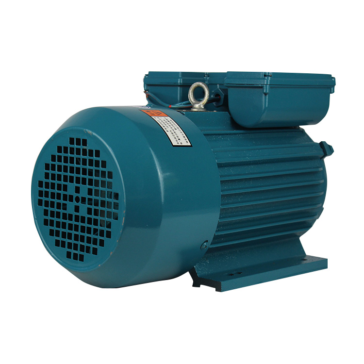 Excellent quality YL Single phase AC 4hp 220v dynamo motor with good price