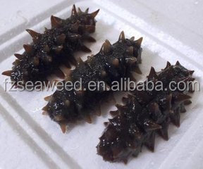 Морской огурец (высушенный)