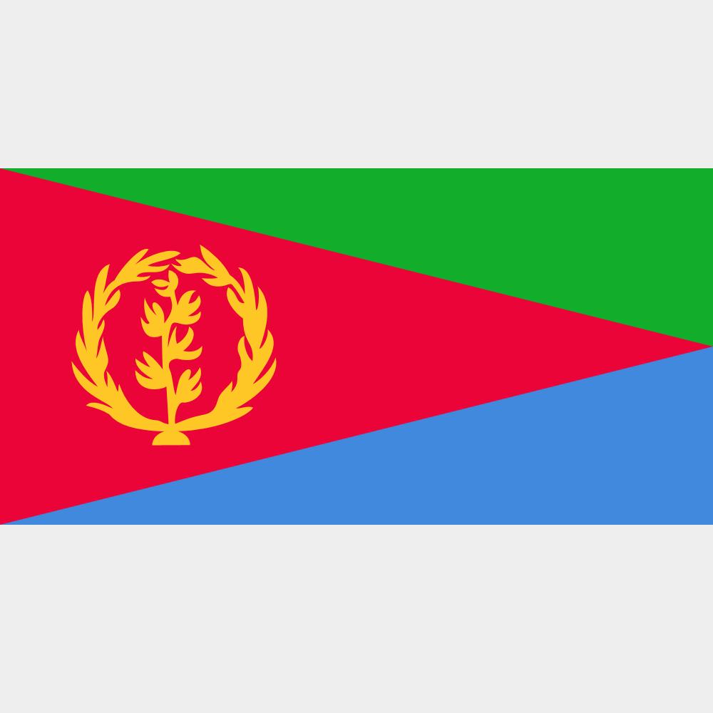 Сделано в Китае Превосходное качество пользовательского Эфиопии флаг