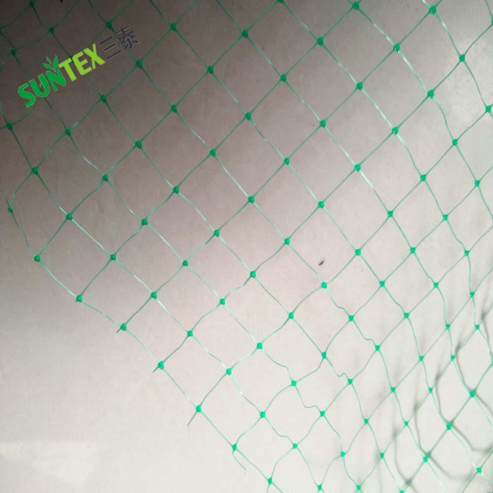 Зеленый PP прессования Таблица виноград защиты птица управление сетки, УФ стабилизированный сельскохозяйственных Анти Птица Чистая, пластик барьер для птиц экран
