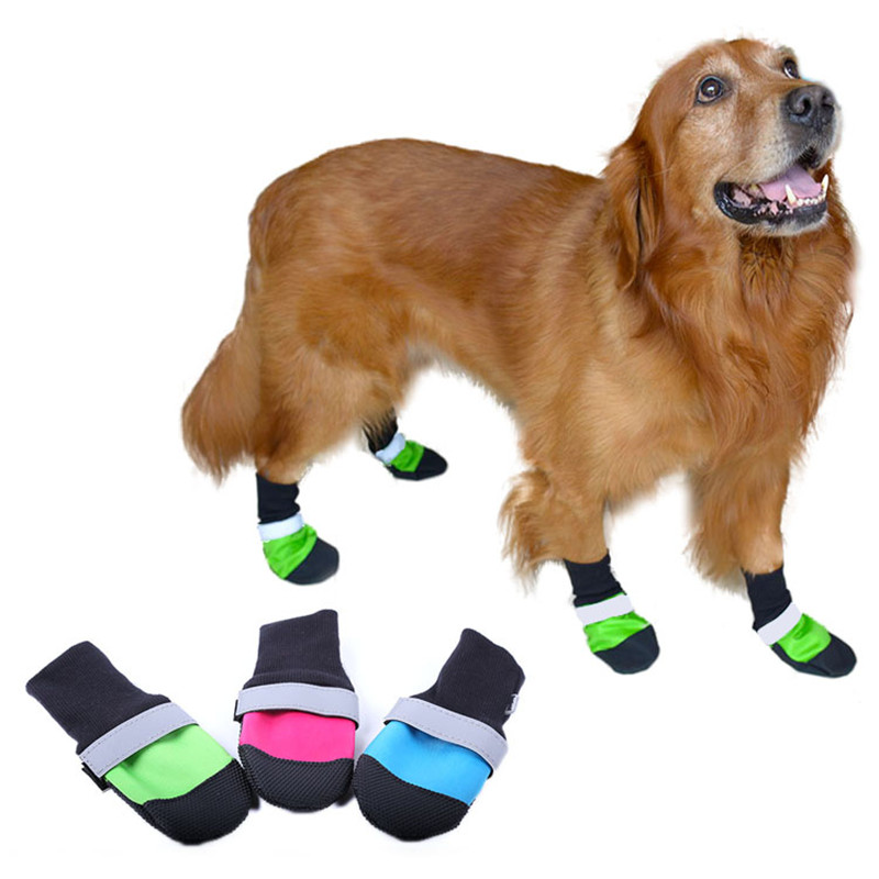 Dog Shoe Promotion-Shop for Promotional Dog Shoe on