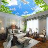 1white cloud Blue sky stretch ceiling