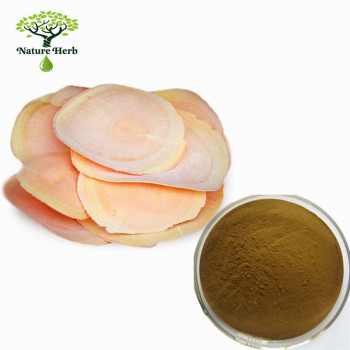 High quality tongkat ali root extract 200 1 | tongkat ali 200:1 | tongkat ali extract 200:1